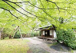 京都国立博物館内
